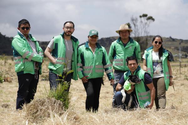 Seguimos plantando árboles en Mochuelo