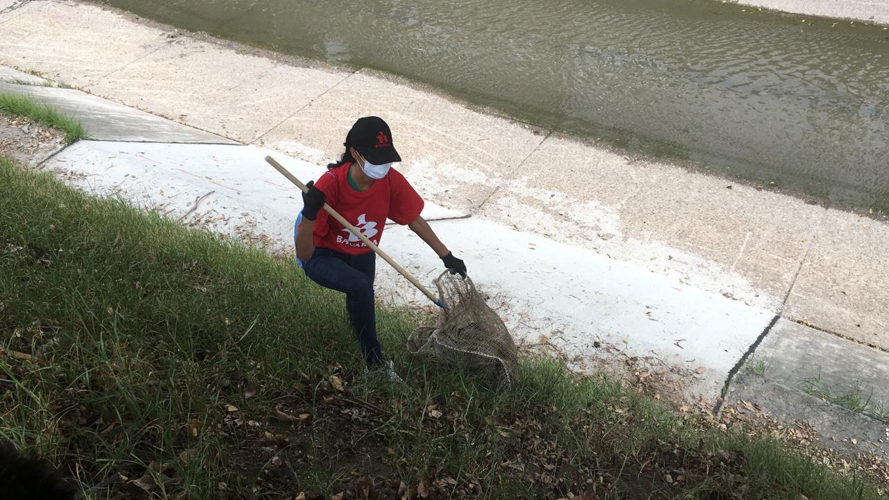 Limpieza del rio fucha
